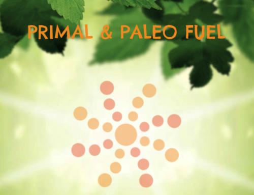 Primal Core Launches!